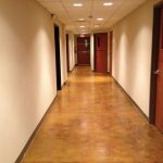 Catalyst Church Hallway staining project Catalyst Church Staining Project tn 51