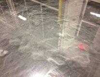 Epoxy Flooring Gallery Nunnally Chevrolet Epoxy Floor1539