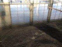 Epoxy Flooring Gallery Nunnally Chevrolet Epoxy Floor1575