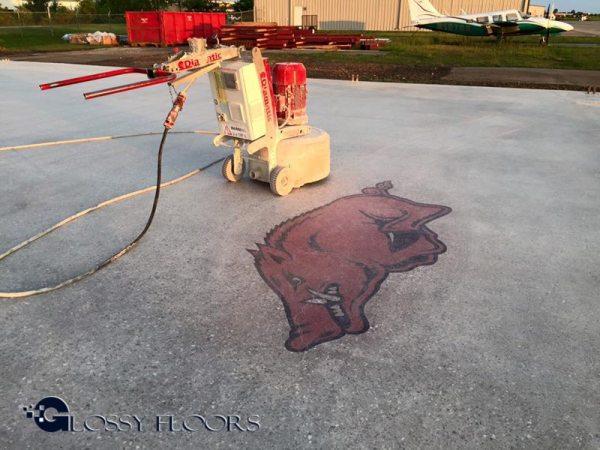 Polished Concrete Razorback polished concrete razorback Polished Concrete Razorback Hog 4