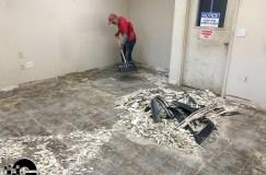 epoxy flakes on a showroom floor Epoxy Flakes On A Showroom Floor Epoxy Flake Floors 38