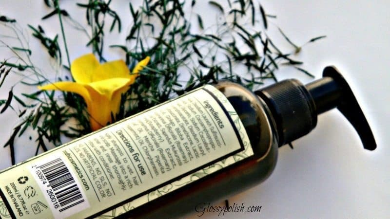 Bodhi Rosemary Mint Shampoo Review 2