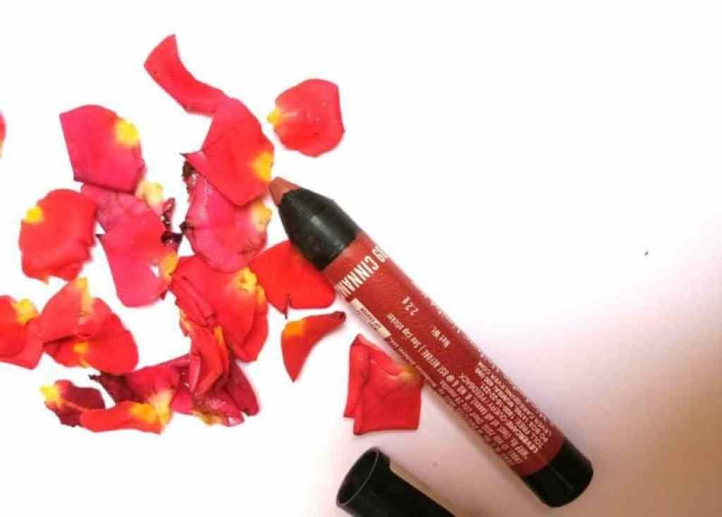Lakme Enrich Lip Crayon Cinnamon Brown Review 2