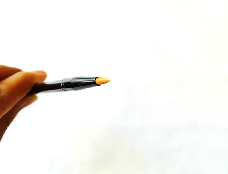 MAC 209 Eye Liner Brush 2