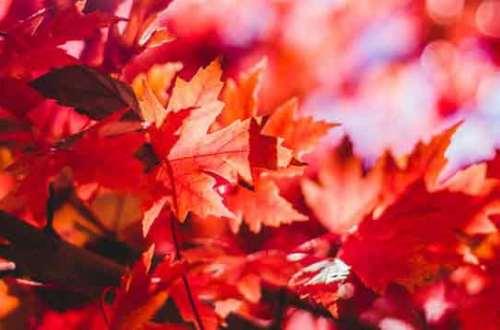 Podsumowanie października