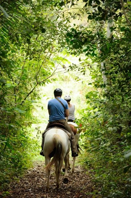 Chaa Creek horseback riding