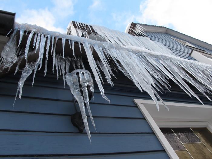 Ein Haus mit langen Haaren, das gibt es nur im Winter.