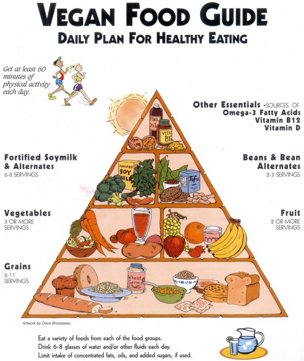While I don't really think it's any harder for vegans to get balanced nutrition than omnivores, I do think it's important for everyone to think a little bit about what our bodies need, so I'm always intrigued when I stumble across things like these vegan food pyramids!