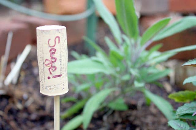 It's always nice to know what you planted where, isn't it? DIY plant markers to the rescue!