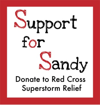 Support for Hurricane Sandy Victims