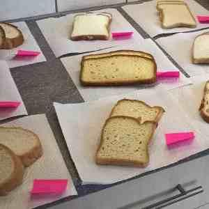 Bread Tasting before