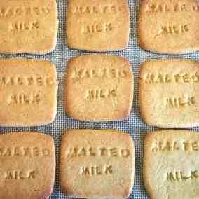 Homemade 'Malted' Milks