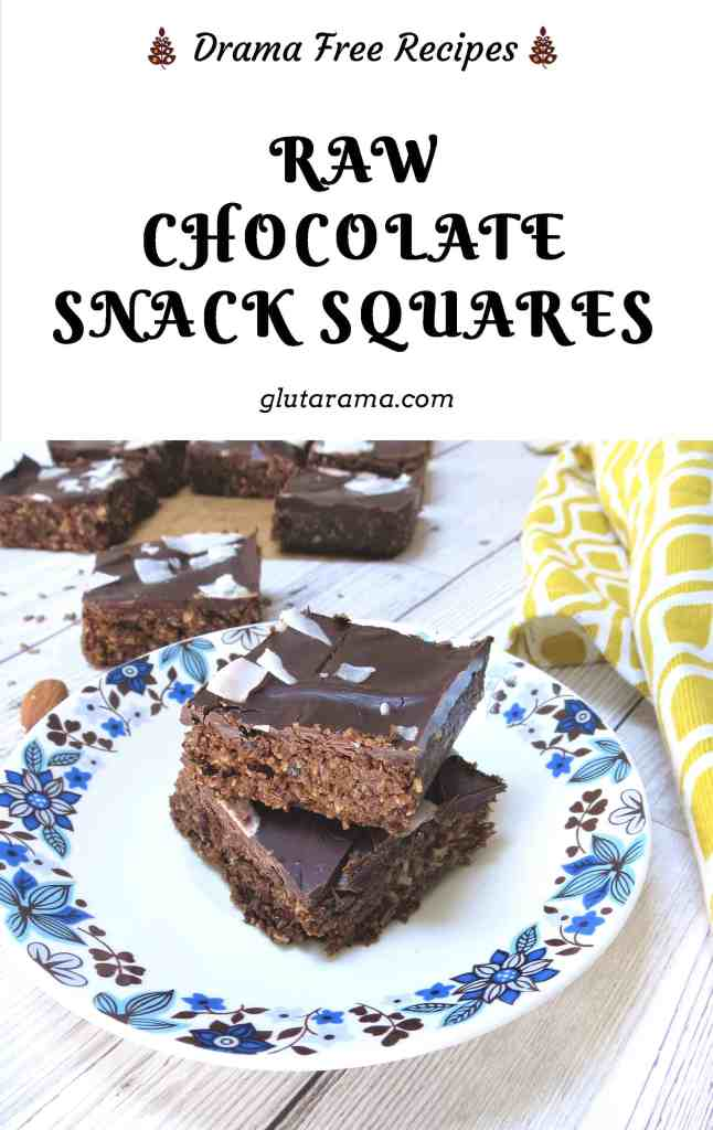 Raw Chocolate Snack Squares;; made vegan with pumpkin protein powder, these are the perfect snack for that afternoon lull in energy #glutenfree #dairyfree #eggfree #protein #chocolate #gymsnacks #energysnacks