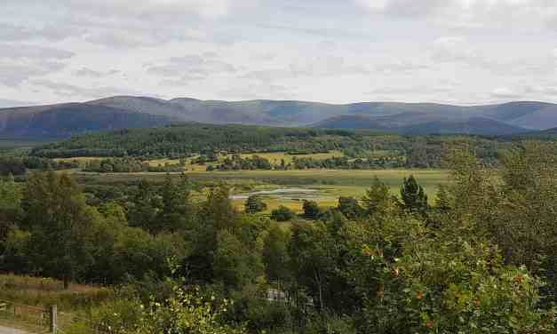 Gluten Free Scotland; our family holiday and August G2BGF Linky
