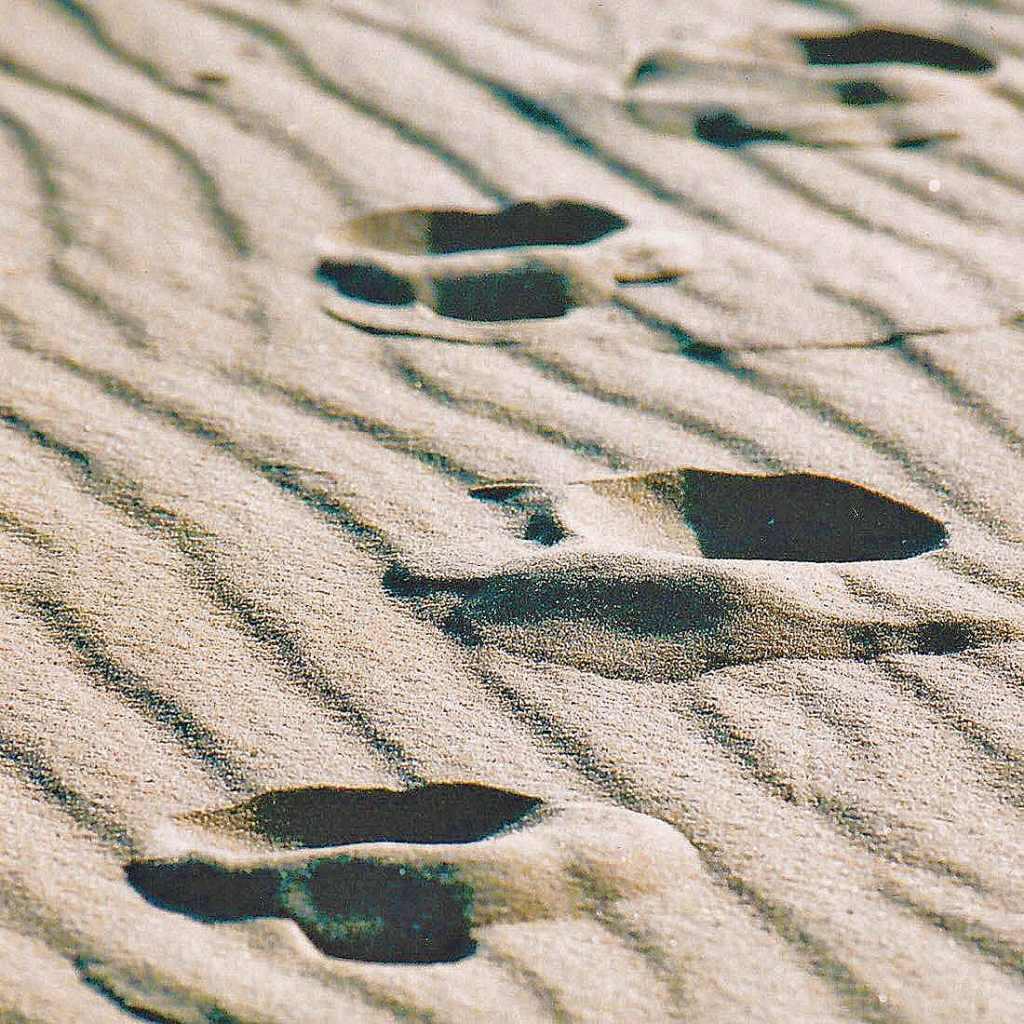 desert-footprints