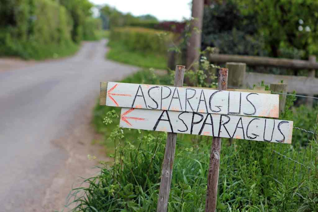 asparagus-signs
