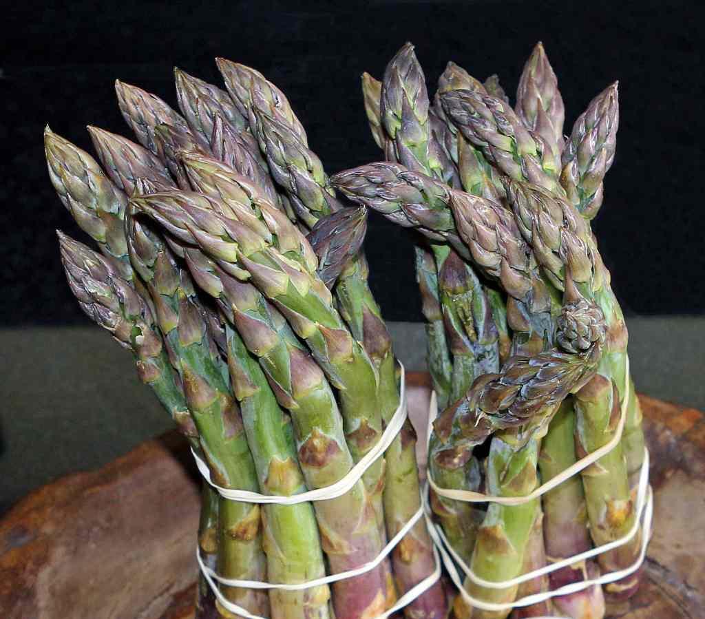 bunches-asparagus