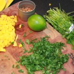 Salmon Fruit Chimmichuri2