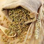 bag-of-wheat-grain