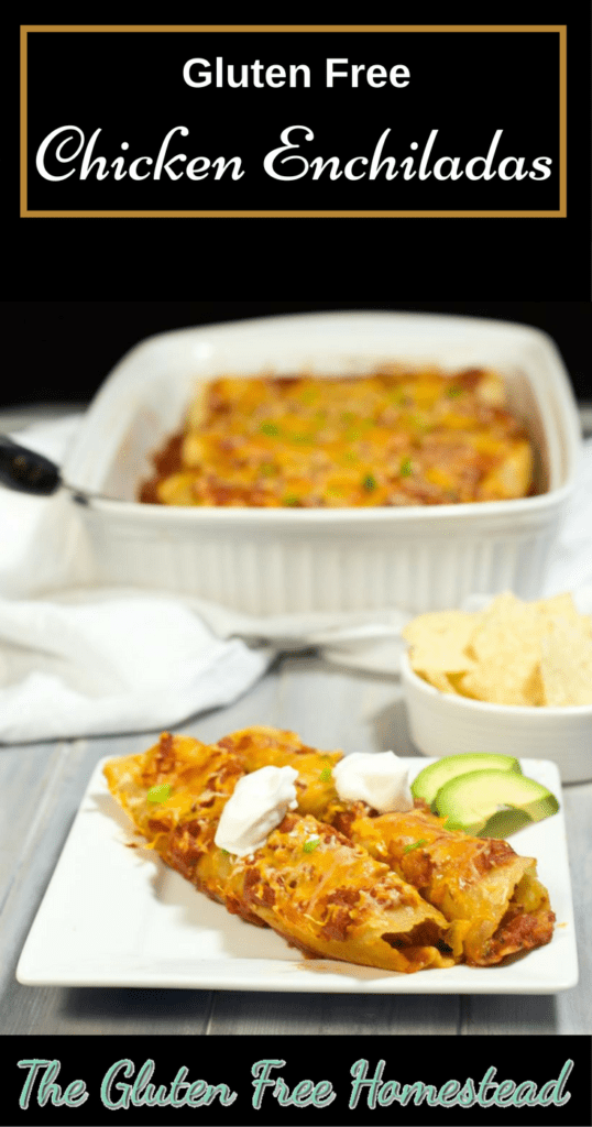 Healthy easy recipe | Gluten free soft corn tortillas | product review | best enchilada casserole