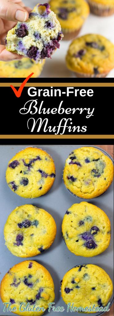 Moist & delicious blueberry muffins | Easy healthy grain-free recipe | No sugar recipe | Coconut flour recipe | paleo recipe | gluten free recipe