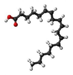 Gamma-Linolenic Acid