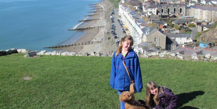From Criccieth Castle