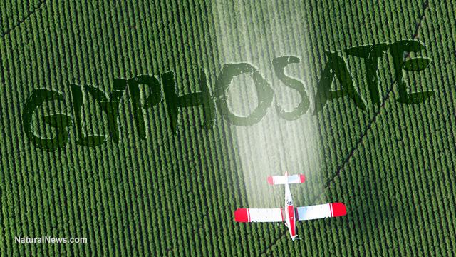 Glyphosate-Crop-Dusting