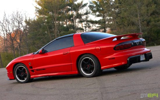 WS6 side skirts