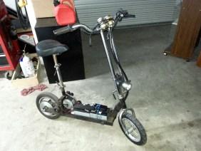 rat-scooter-1