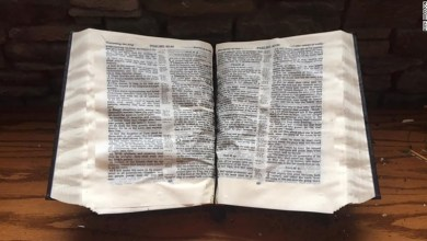 Photo of A Bible found Untouched Amid the tornado wreckage in Mississippi