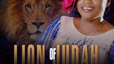 FaitFavour - Lion Of Judah