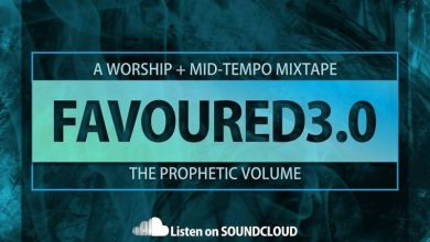 DJ frendzy - favoured 3