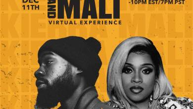 The Kierra and Mali Virtual Experience