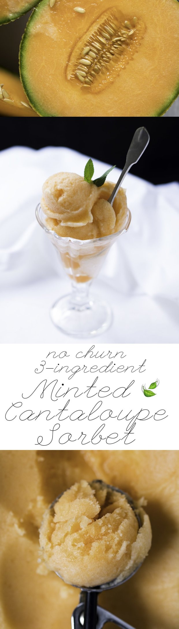 Minted Cantaloupe Sorbet (No Churn & 3-Ingredient) ? #sorbet #cantaloupe #vegan