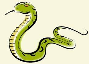 Αποτέλεσμα εικόνας για φίδια