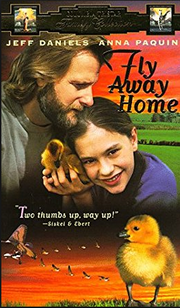 When to Fly Away Home
