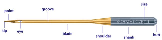 needle-anatomy