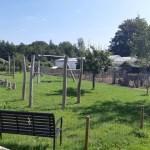 { Uittip }   Met kinderen naar tuinderij De Bundertjes in Helmond
