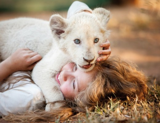 Mia and The White Lion film