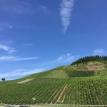 { Review } | Landal Sonnenberg in Leiwen, Duitsland