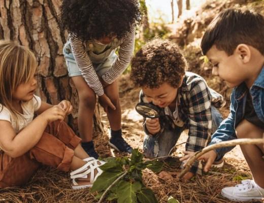 8 leuke gratis uitstapjes met kinderen