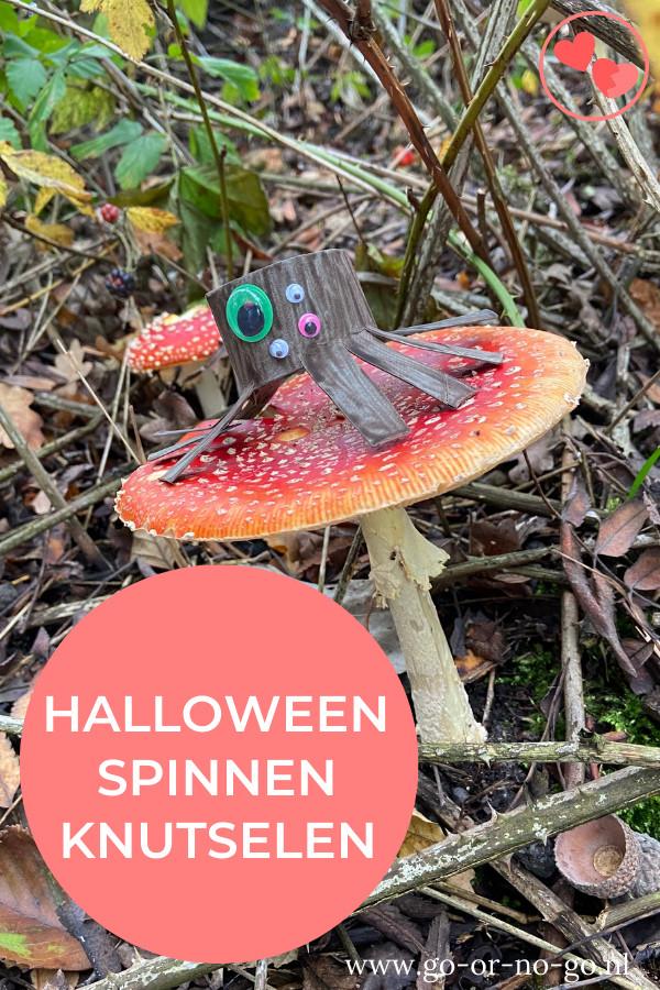 Wil je je huis versieren met een leuke en enge Halloween knutsel? Deze monster spinnen zijn leuk om te maken en staan lekker griezelig!