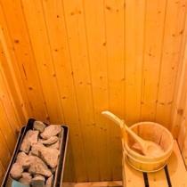 Pitho-Sauna---Inside (Custom)