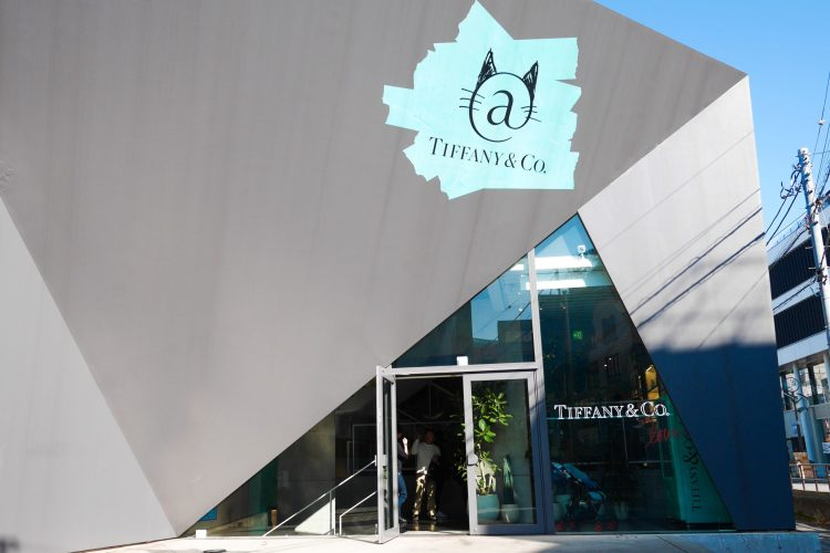 Tiffany Cat Street Cafe