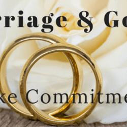 Marriage and Goals take commitment. For either to succeed you must have commitment