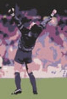 Goalkeeper victory