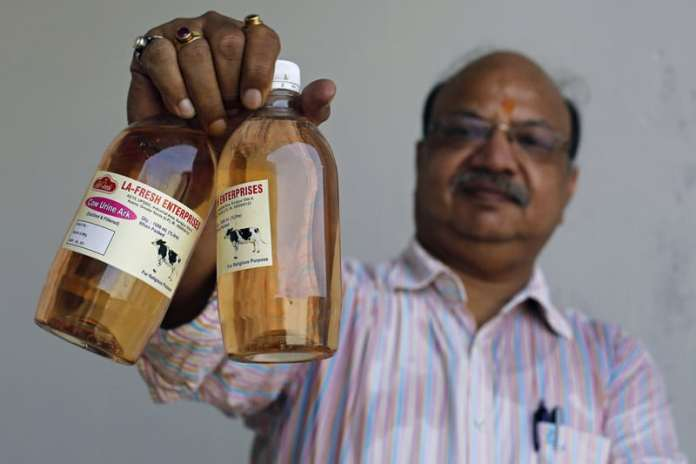 Vikash Chandra Gupta, a charted accountant by profession and venturer of cow urine business hold the bottles of cow urine which he plans to retail at Greater Noida