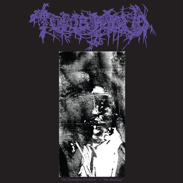 Tomb Mold Bottomless Perdition Moulting