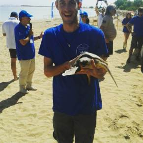 Volunteers holding sea turtle in Spain